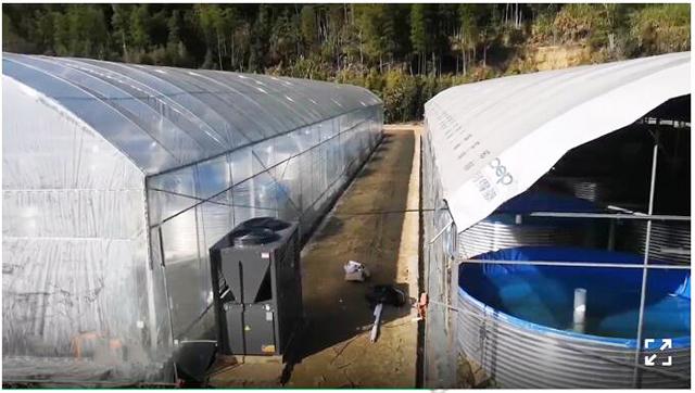 福建某市石斑鱼养殖大棚采暖工程
